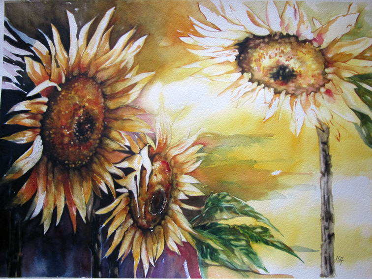 Flash di girasoli (56x76)